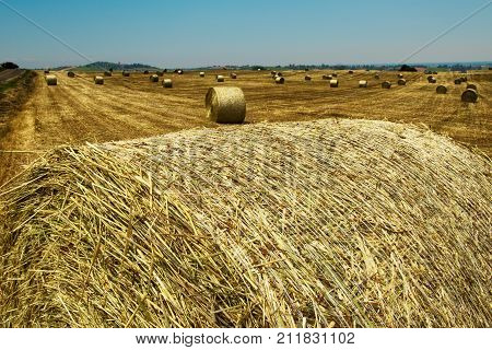 Landscape behind a hay bale horizontal image