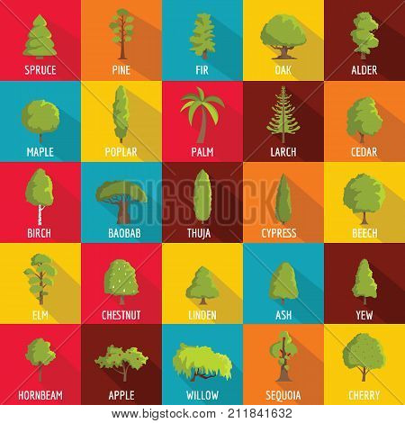 Tree icons set. Flat illustration of 25 tree vector icons for web
