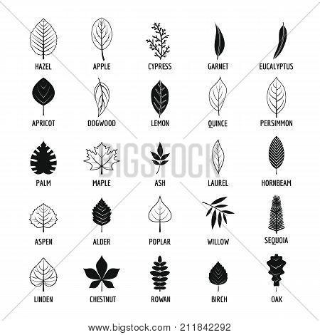 Leaf icons set. Simple illustration of 25 leaf vector icons for web