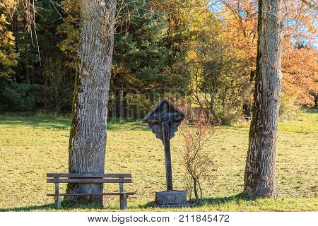 Crossroads between two trees with bench for resting. -Landscape format