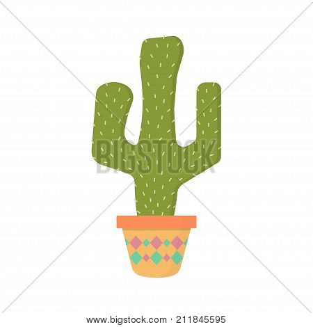 cactus in a flower pot colored illustration green cactus plant cactus in pot isolated on white background