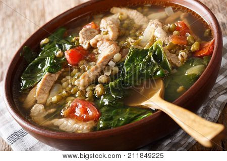 Filipino Soup Of Beans Mung With Pork Closeup In A Bowl. Horizontal