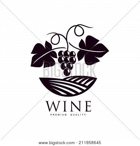 grapevine with ripe grapes, leaves twig on background of field of vineyard. Elegant Company logo, brand icon design. Isolated illustration on a white background.