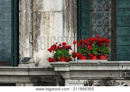 Red flowers in red pots against the background of a vintage building in Venice Italy. Red flowers in pots against the background of a vintage building in Venice Italy. Venetian balcony.