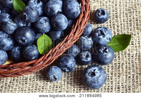 Freshly picked blueberries in a basket on a burlap cloth background.Fresh organic blueberry.Bilberries.Healthy eating,vegan diet or raw food concept.