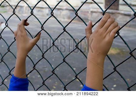 childish hands illegally kept fence at the border