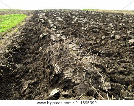 Plowed field with Ukrainian chernozem. Furrows are visible. Closeup.