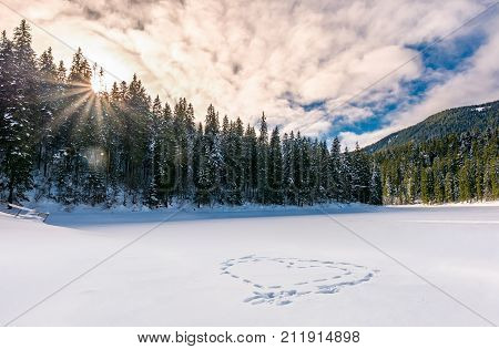 Heart On The Snow In Spruce Forest At Sunset