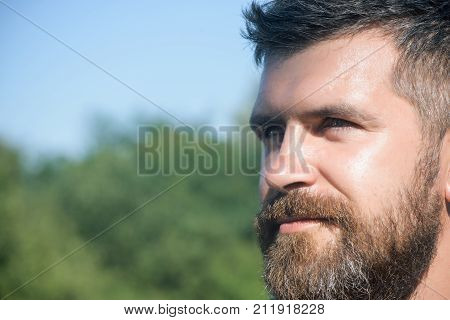 Man or hipster with beard and moustache hair on caucasian face on sunny summer day on blurred natural environment. Virility strength and vigor concept copy space