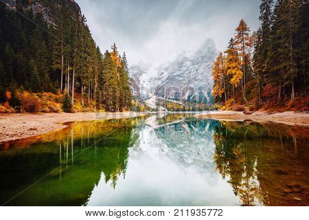 Scenic image of alpine lake Braies (Pragser Wildsee). Location place Dolomiti national park Fanes-Sennes-Braies, Italy, Europe. Great picture of wild. Explore the beauty of earth. Tourism concept.