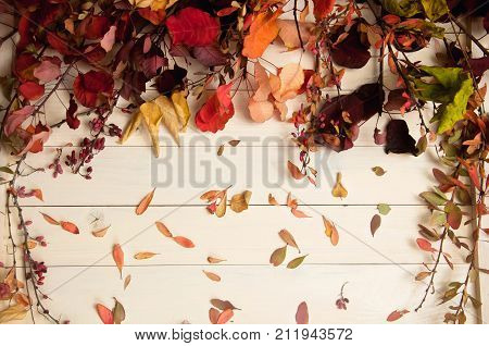 Autumn ikebana from fallen leaves on white wooden background