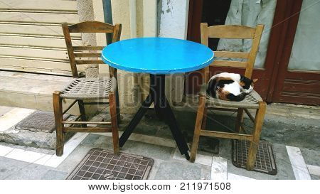 A stray cat lies on a chair near a coffee shop. The historic centre of Rethymnon on the island of Crete in Greece