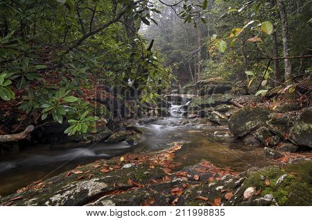 A small waterfall along a creek in North Carolina in autumn on a rainy day.