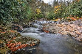A small cascade along a creek in North Carolina in autumn on a rainy day.