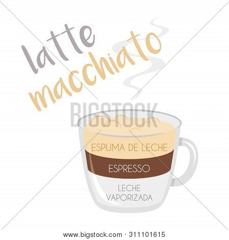 Vector Illustration Of A Latte Macchiato Coffee Cup Icon With Its Preparation And Proportions And Na