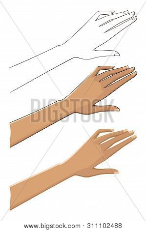 Three Options Female Hand. Linear, Tonal And Contour. Vector Image. Isolated On White Background