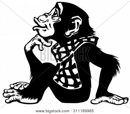 Cartoon Intelligent Chimpanzee Wearing A Scarf. Great Ape Or Chimp Monkey Sitting In Thinker Pose An