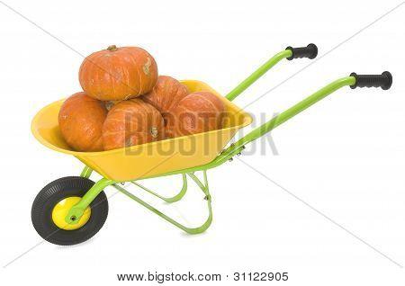 Orange pumpkins in wheelbarrow on white background