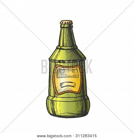 Hand Drawn Glass Bottle With Blank Label . Ink Design Sketch Vintage Bottle Of Alcoholic Froth Drink Lager Or Ale. Concept Color Package With Blank Label Template Cartoon Illustration poster