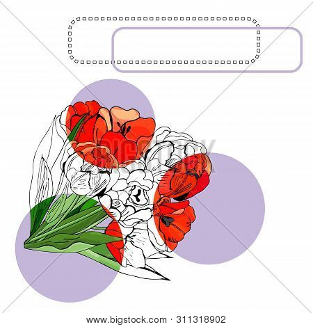 Template For Invitation Or Greeting Card  With  Blossoming Red Tulip Flowers, Lilac Circle And Frame