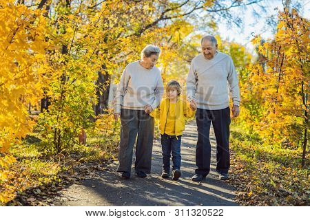 Senior Couple With Baby Grandson In The Autumn Park. Great-grandmother, Great-grandfather And Great-
