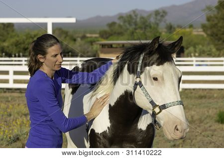 Woman Performs Equine Myofascial Release Technique On A Shoulder