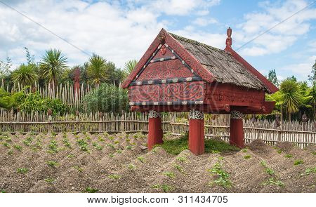 Hamilton, New Zealand - December 08 2017 : Te Parapara The Traditional Maori Garden In Hamilton Gard