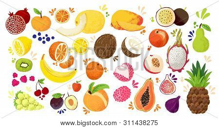 Set Of Colorful Hand Draw Fruits - Tropical Sweet Fruits, And Citrus Fruit Illustration. Apple, Pear