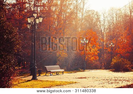 Autumn September morning landscape. Bench at the autumn alley under colorful deciduous autumn trees. Sunny autumn park scene