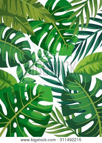 Vector Photo Free Trial Bigstock 21 doodle tropical leaves vector pack hand drawn doodle. bigstock
