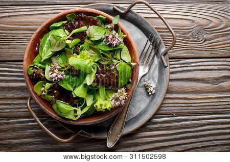 Top View At Clay Dish With Green And Violet Lettuce, Lamb's Lettuce Salad With Oregano Flowers On Vi