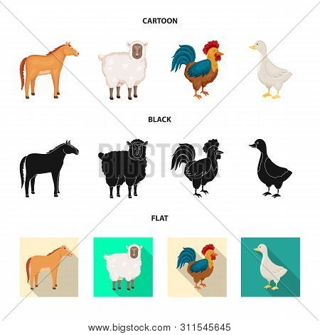 Vector Illustration Of Breeding And Kitchen Icon. Collection Of Breeding And Organic Vector Icon For