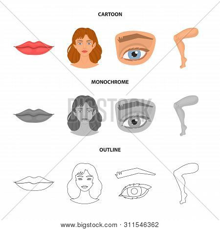 Vector Illustration Of Body And Part Logo. Set Of Body And Anatomy Stock Vector Illustration.