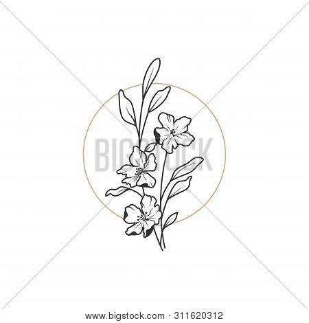 Vector Feminine Signs And Logo, Templates Set. Floral Illustration-hydrangea, Ranunculus, Anemone An