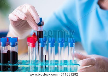 Young lab assistant testing blood samples in hospital