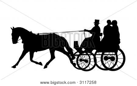 Horse And Carriage Wedding 6