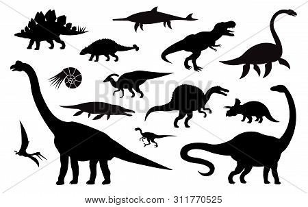 Vector Set Collection Of Different Black Dinosaur Silhouette Isolated On White Background