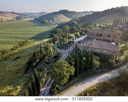 The vineyard of Montalcino in Siena, Toscana Italy. poster