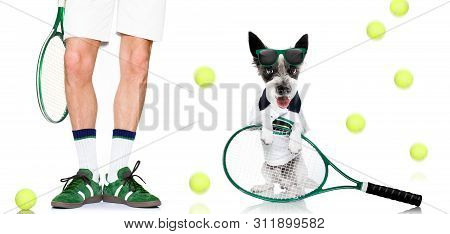 Tennis Dog  With Owner And Ball