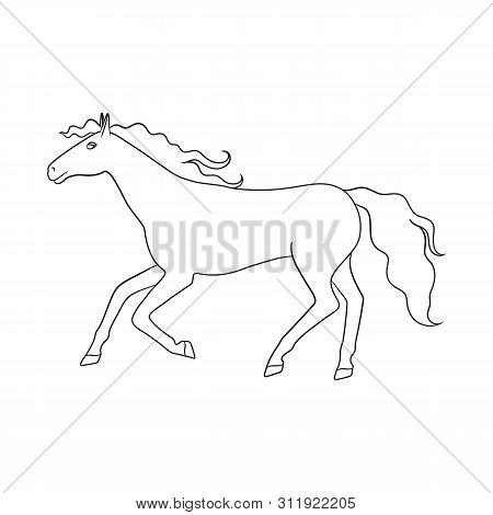 Vector Design Of Steed And Brown Sign. Collection Of Steed And Gallop Stock Vector Illustration.