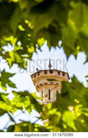 Pigeon on the turret of the National Museum of the Union at Alba Carolina Citadel, Alba Iulia, Alba County, Transylvania, Romania, blurred tree branches in the foreground poster