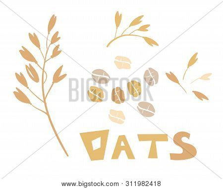 Cereal Plants, Agriculture Industry Organic Crop Products For Oat Groats Flakes, Oatmeal Packaging D