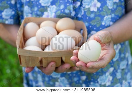 Cute Grandmother Holds A Tray With Eggs. Close Up With Selective Focus For Eggs Or Eggs. Eggs On Egg