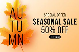 Autumn Sale Banner. Seasonal Background With Fall Leaves. Maple Leaf With Black Text. Start Of A Sea