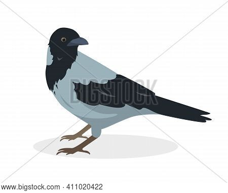 Crow Bird Icon Isolated On White Background. Gray Crow. Vector Illustration.
