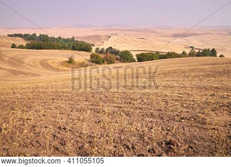 The Palouse Washington State United States. The Rolling Hills Of The Palouse Seen From Steptoe Butte