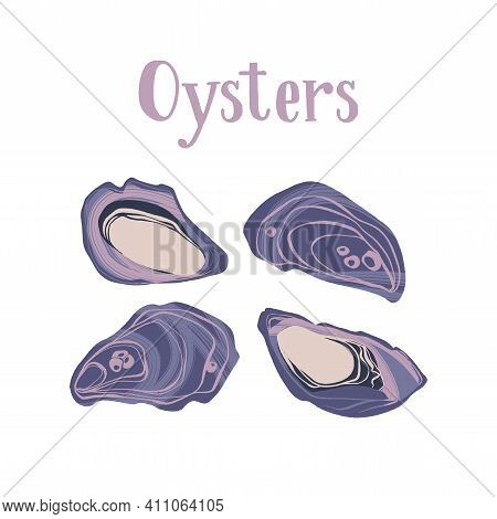 Seafood Healthy Nutrition Product. Gourmet Freshest Oysters.
