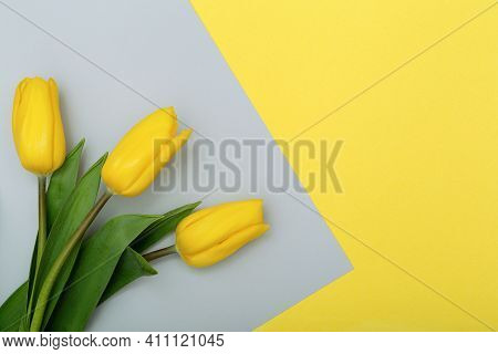 Easter Bright Background With Yellow Grey Tulips, Yellow Tulips Border On Grey Copy Space For Your T