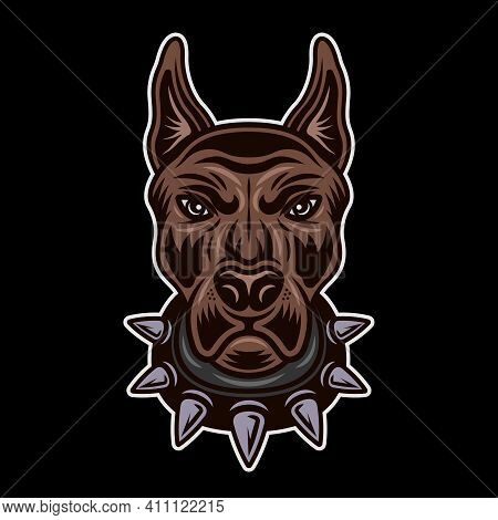Dog Head In Spiked Collar Front View Vector Colored Illustration On Dark Background