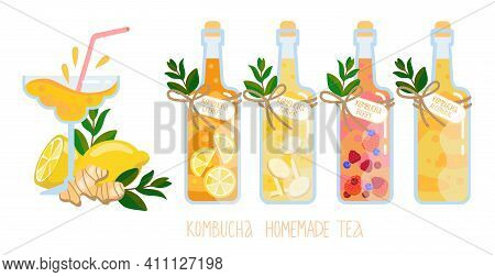 Kombucha Homemade Fermented Raw Tea In Glass Bottles Set. Healthy Natural Probiotic Drink With Ginge